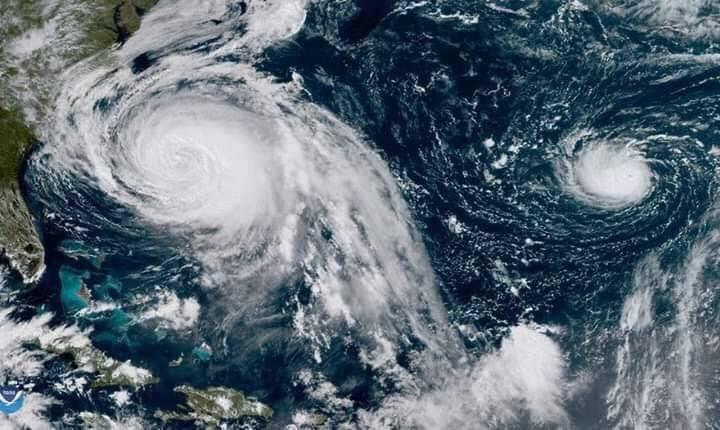 Dear hurricane